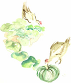 Watercolour painting of chickens in a vegetable garden