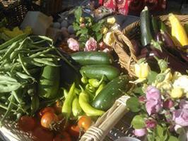 HEHub Garden Produce